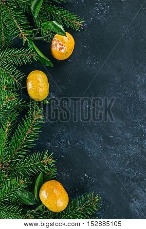 Left framework of mandarins with  evergreen twigs over spotty black surface