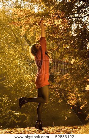 Young girl with golden leaves. Woman enjoying time in autumnal forest. Nature outdoor scenery relax concept.