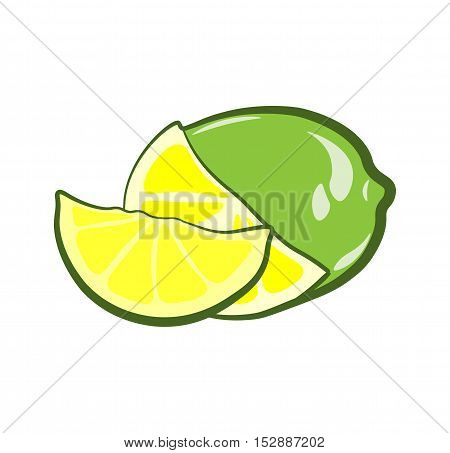 Lime and lime Slices. Fruit. An Isolated Object. Vector Illustration