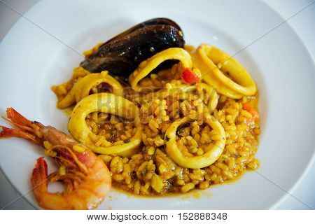 Risotto with mussels , calamari and shrimp .