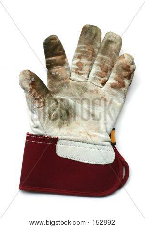 Used Gardening Glove