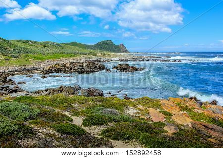 Landscape of Cape of Good Hope Nature Reserve in Cape Peninsula National Park, South Africa. Cape Point on background.