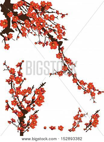 Red spring flowers sunshine blooming on tree vector illustration white background