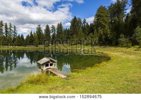 Small House For Ducks
