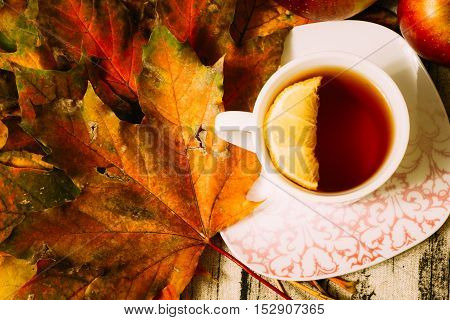 A cup of black tea with lemon in a composition with dry autumn maple leaves. Top view