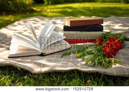Books and flowers on a summer lawn,green background