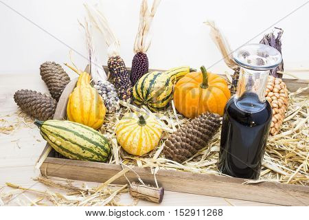 Autumn mood with decorative pumpkins, corns, pine cones, a bottle of red wine and straw