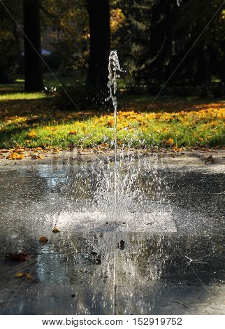 fountain splashing silver drops of water in the autumn park