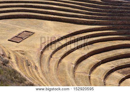 Unique Inca circular terraces at Moray in Peru South America