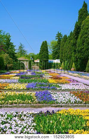 Flowerbeds in Botanical Garden at Spring Bulgaria