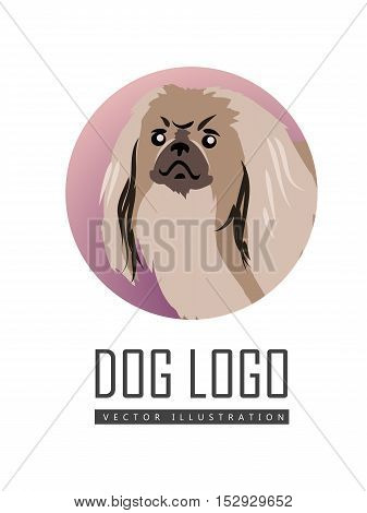 Dog vector logo in flat style. Pekingese bust in the blue circle illustration for pet shop, breed club logotype, app icon, animal infogpaphics elements, web design. Isolated on white background