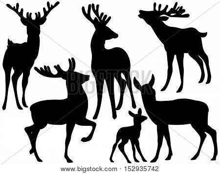 Vector black elegant woodland deers silhouette   set
