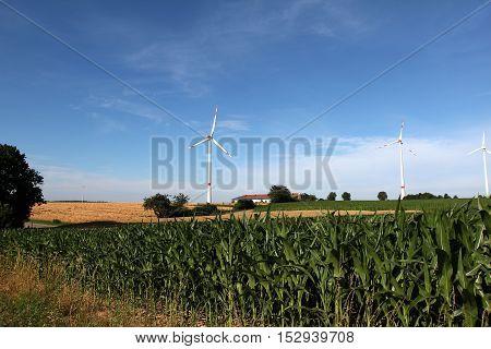 Alternative Energy / Wind turbines in a field