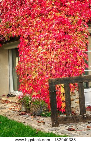 closeup on traditional French cottage in early Autumn