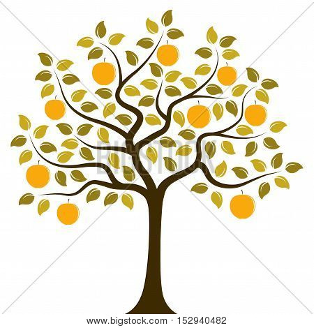 vector apple tree isolated on white background