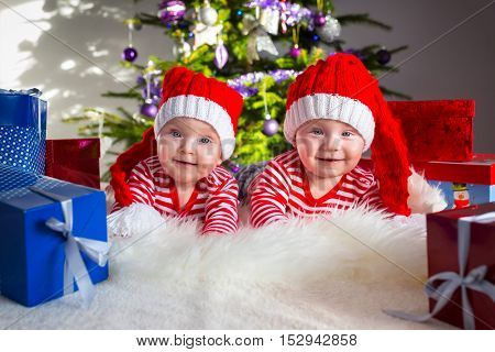 Twins babies posing with presents under Christmas tree