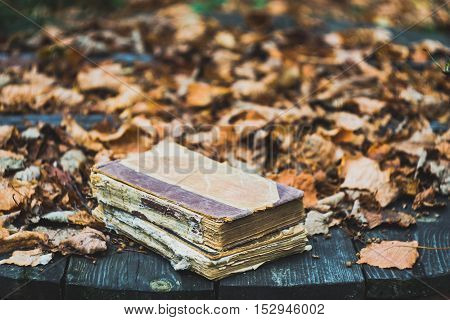 Old books on a wooden table in autumn garden