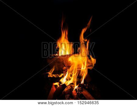 Fire on Black Background. Campfire at Night. Burning wood.