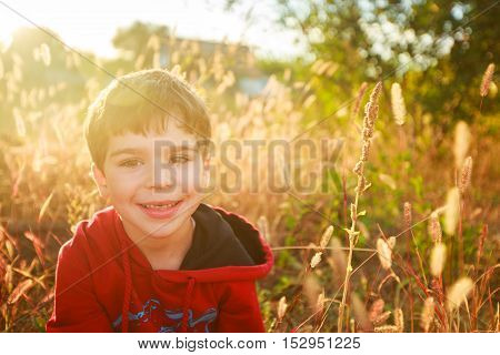 Portrait of a five year old boy at sunset in the field among the ears dry