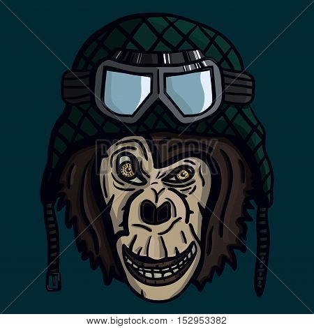 Angry monkey muzzle in military helmet with goggles