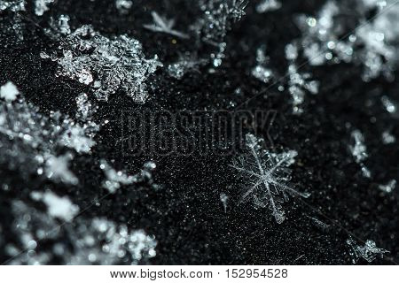 Beautiful winter pattern of ice crystals snowflakes closeup on a black background