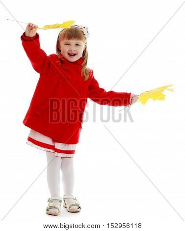 Joyful little girl in a bright red coat waving yellow maple leaves.Isolated on white background.
