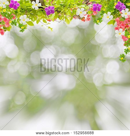 Beautiful green leaves frame with flower on scenery nature blur background.