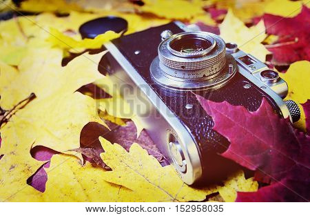 Vintage camera on autumn leaves background.Retro camera and colorful maple leaves.Vintage filtered.Selective focus.