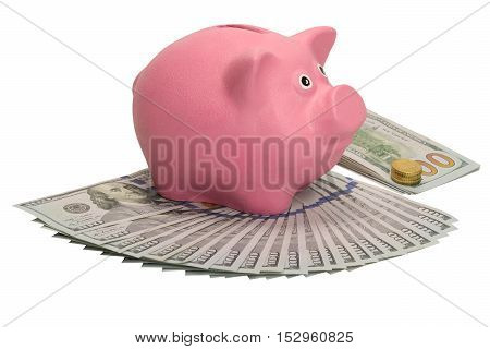 moneybox pig stands on the fan of dollars and a pack with a coin