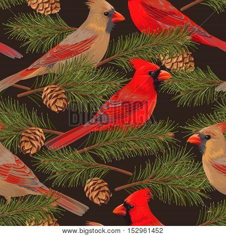 Cardinal, rowan and spruce vector seamless background