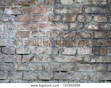 red brick wall. perfect for background.
