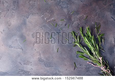 bunch of fresh green rosemary on gray concrete background