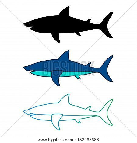 Shark icon. Shark logo. Vwctor illustration isolated on white.