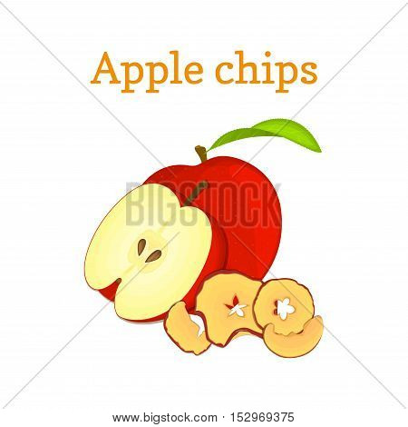 Vector illustration Half of red apple and dried fruits. Slices of apple chips, baked delicious fruits on white background. It can be used in the design of packaging cereals, breakfast healthy food