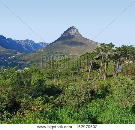 THIS IS LIONS HEAD, CAPE TOWN SOUTH AFRICA 12BHN