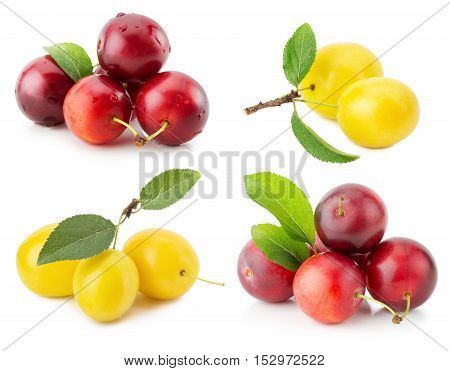 collection of cherry plums isolated on the white background.