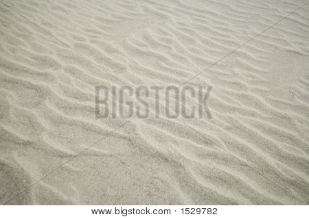 Wind Blown Sand
