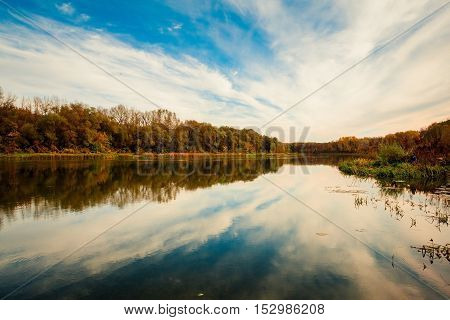 The beatiful summer landscape with a river and trees