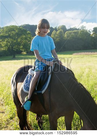 Boy in a Saddle of Horse Learning Horseback Riding