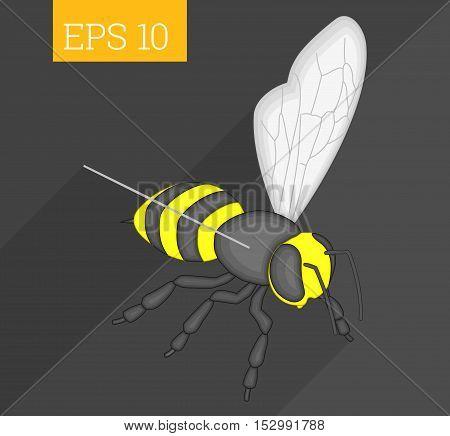 Bee Isometric Vector Illustration