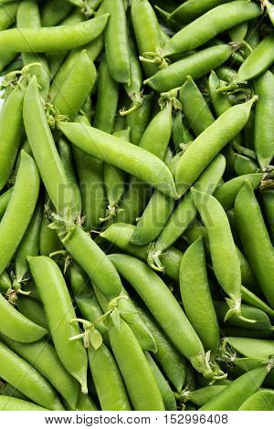 The Fresh green peas background close up