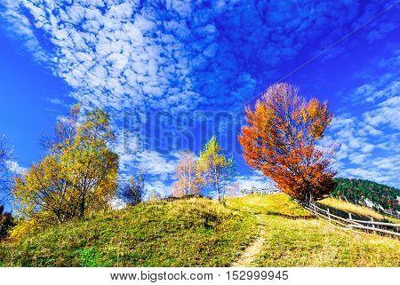 Colorful autumn morning in the Carpathian Mountains. Magura village Transylvania Romania.