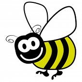 picture of bumble bee  - Bumble bee vector - JPG