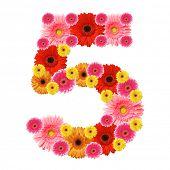 foto of arabic numerals  - 5 - JPG