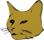 Tomcat.Eps poster