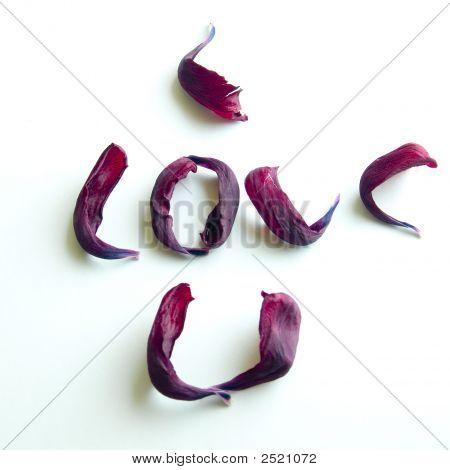 Petals I Love U