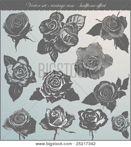vector set : vintage rose - halftone effect