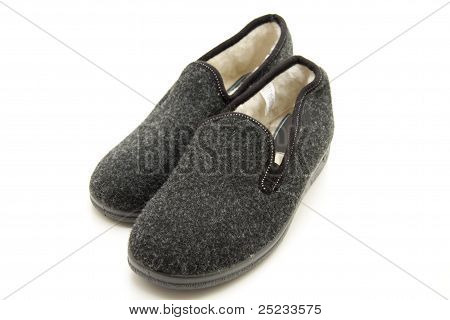 House Shoe with feed