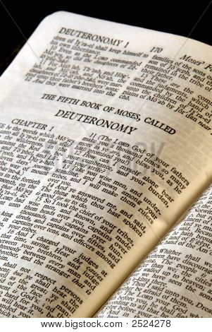 Bible Series Deuteronomy