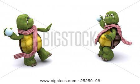 tortoises having a snowball fight